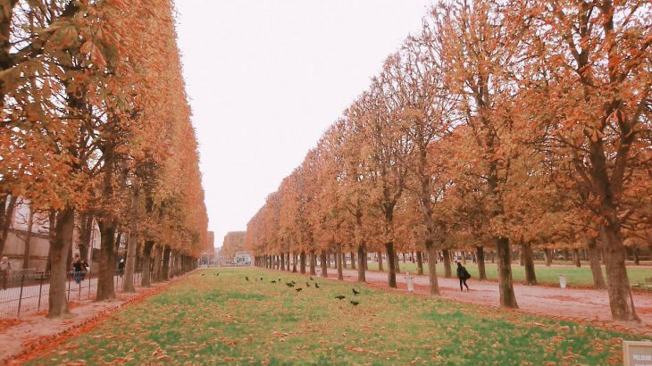 【秋のパリ観光】紅葉を楽しむならリュクサンブール公園がおすすめ!