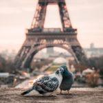 フランス人との恋の始まりに正解はない!?自分を大切にすべき3つの理由